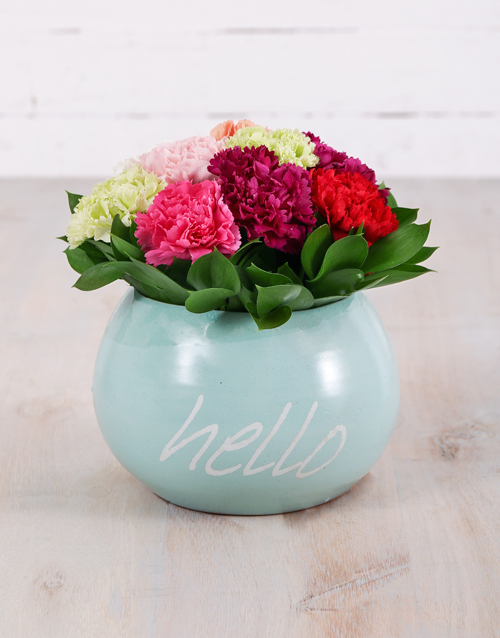 carnation: Mixed Carnations in Hello Pot!