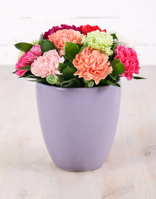 spring-day: Mixed Carnations in Purple Glazed Pot!