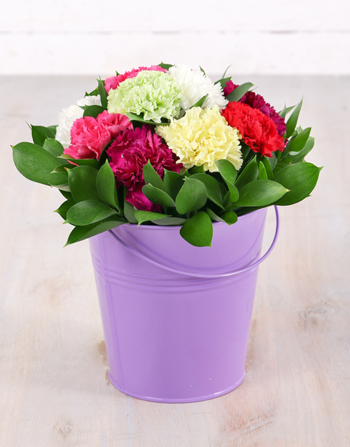 colour: Mixed Carnations in Tin Bucket!