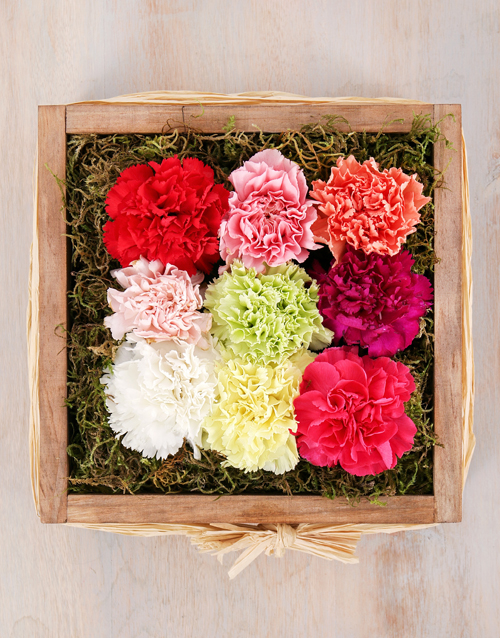 colour: Mixed Carnations in Wooden Crate!