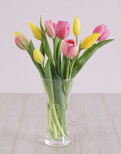 tulips: Pink and Yellow Tulips in Vase!
