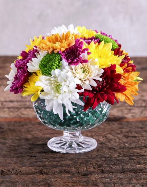 daisies: Colourful Sprays Bowl!