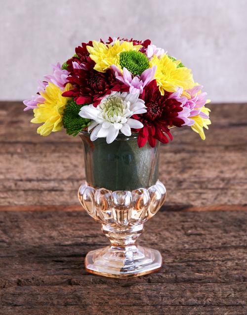 daisies: Mixed Sprays in Mini Hurricane Vase!