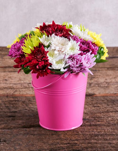 daisies: Sprays in a Pink Bucket!