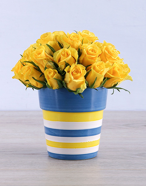 birthday: Yellow Roses in Round Stripy Vase!