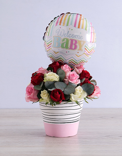 colour: Welcome Baby Mixed Roses in Pot!
