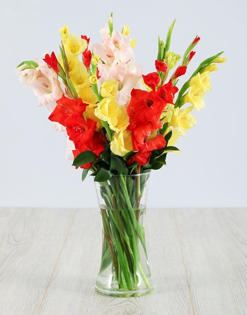 seasonal: Mixed Gladiolus in a Glass Vase!