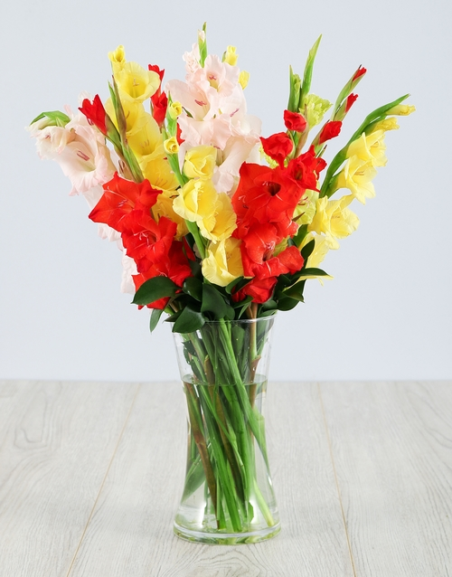 whats-new: Mixed Gladiolus in a Glass Vase!