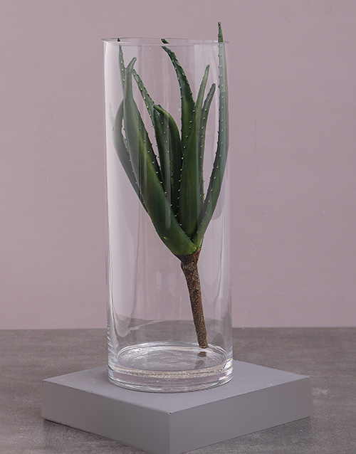 house-warming: Green Silk Aloe in a Clear Vase!
