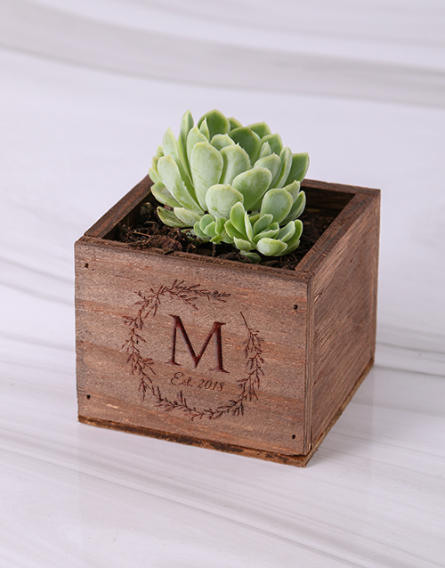 anniversary: Personalised Laurel Wooden Box with Succulent!