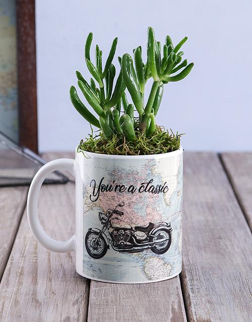 flowers: Classic Succulent Mug!