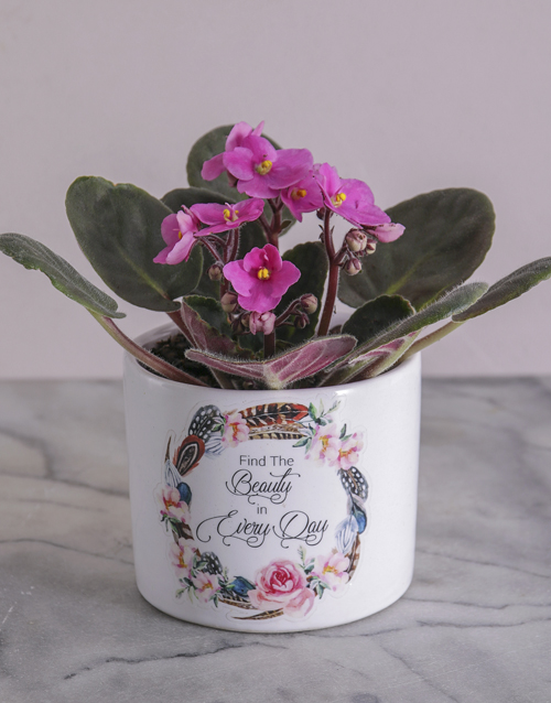 easter: Beauty in Every Day African Violet!