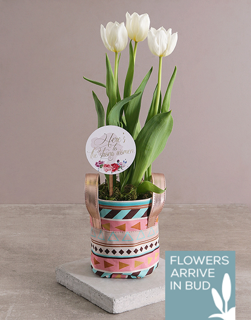 apology: White Tulip Pot in Geo Pattern Pot Cover!