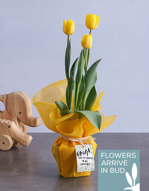 baby: Congrats Yellow Tulips!