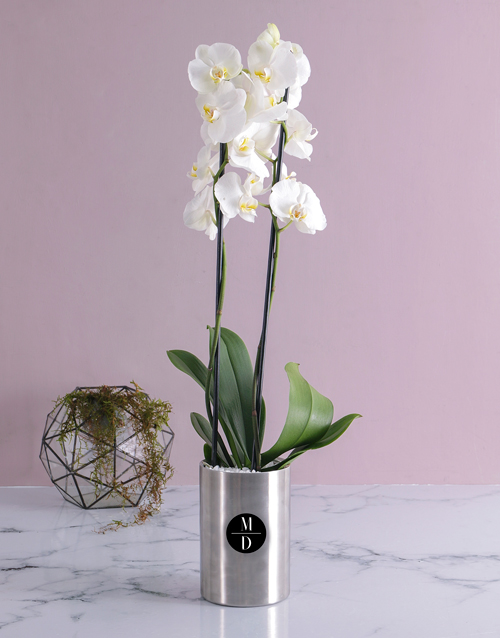 anniversary: Personalised Initial Orchid Wine Cooler!