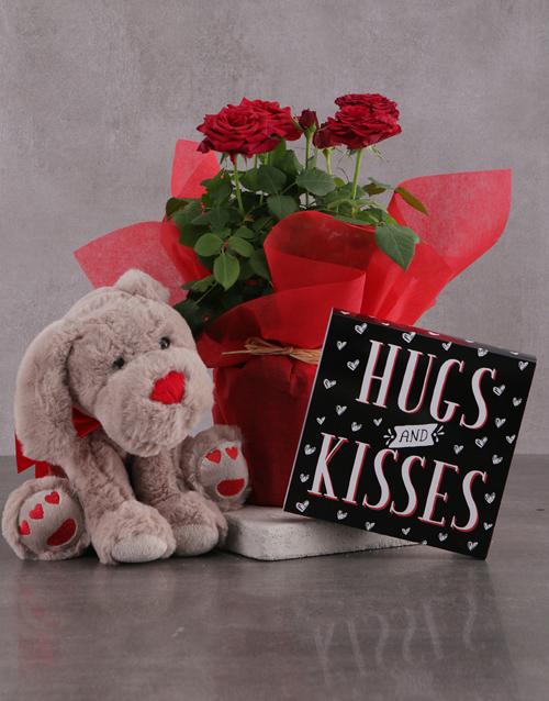 birthday: Red Rose Bush Delight!