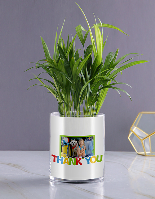 thank-you: Personalised Thank You Areca Palm!