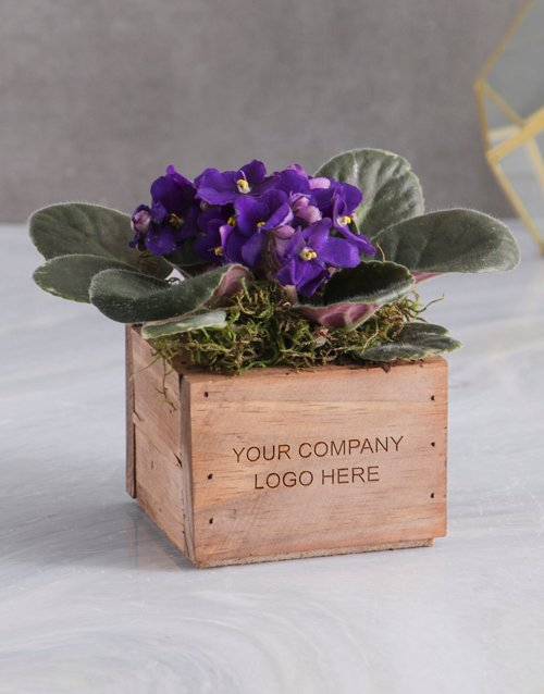 bosses-day: Personalised African Violet Crate!