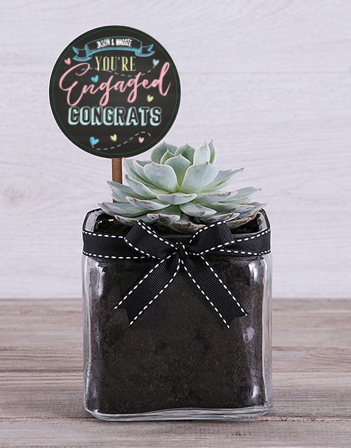 personalised: Personalised Congrats On Engagement Succulent!
