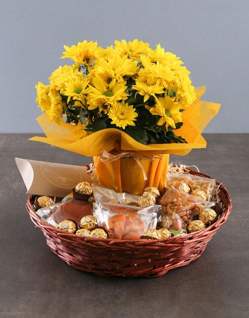 colour: Cheerful Chrysanthemum and Gourmet Basket!