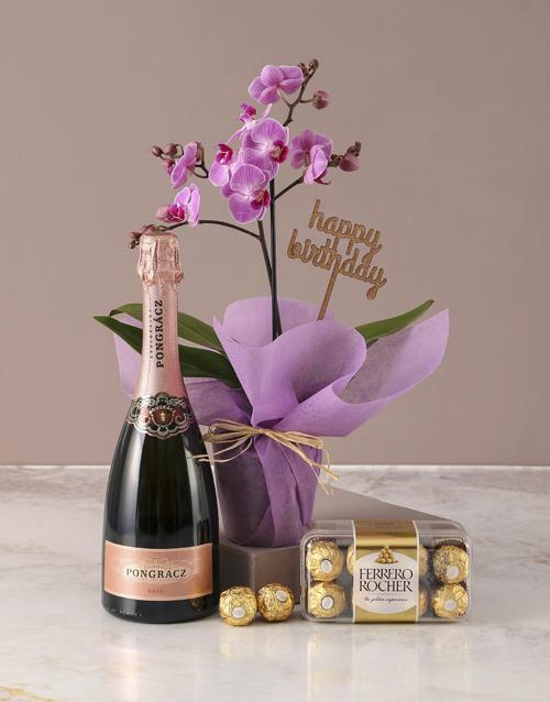 orchids: Pink Midi Orchid Birthday Hamper!