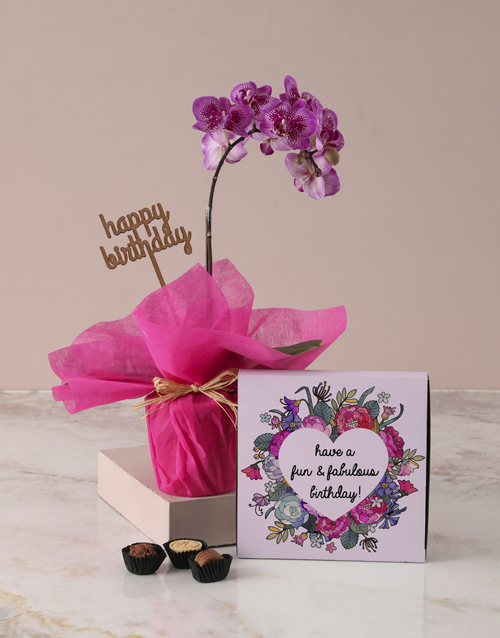 orchids: Midi Pink Orchid Birthday Gift!