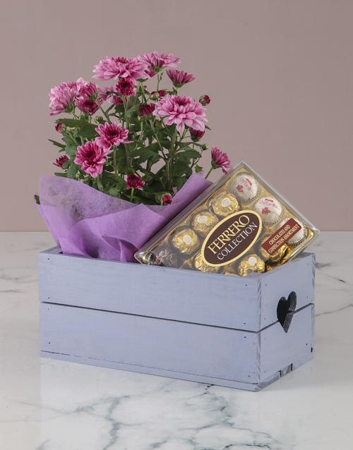 birthday: Chrysanthemum and Chocolates in Heart Crate!