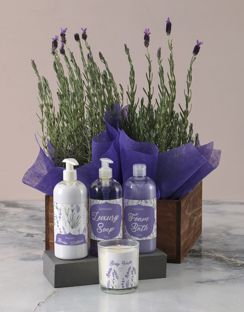house-warming: Luxurious Lavender Duo Bath and Body Gift Set!