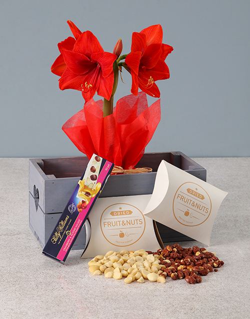 birthday: Red Amaryllis Nougat Hamper in Heart Crate!