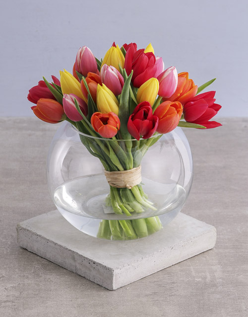 tulips: Mixed Tulips in Bubble Vase!