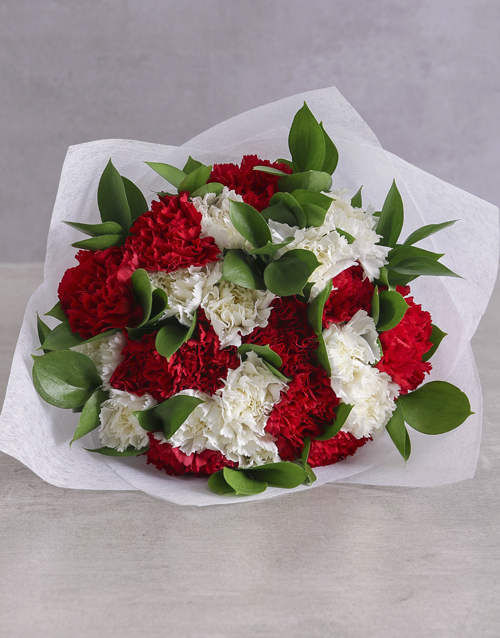 grandparents-day: Striking Red and White Carnations !