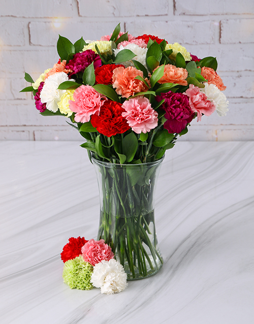 colour: Mixed Carnations in a Tall Glass Vase!