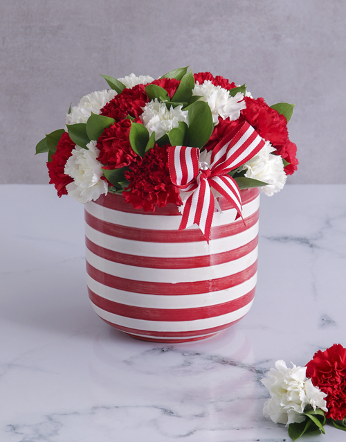 colour: Red and White Carnations in a Stripy Pot!