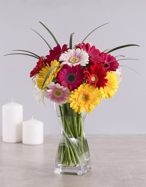 flowers: Mixed Gerbera Daisies in a Clear Vase!
