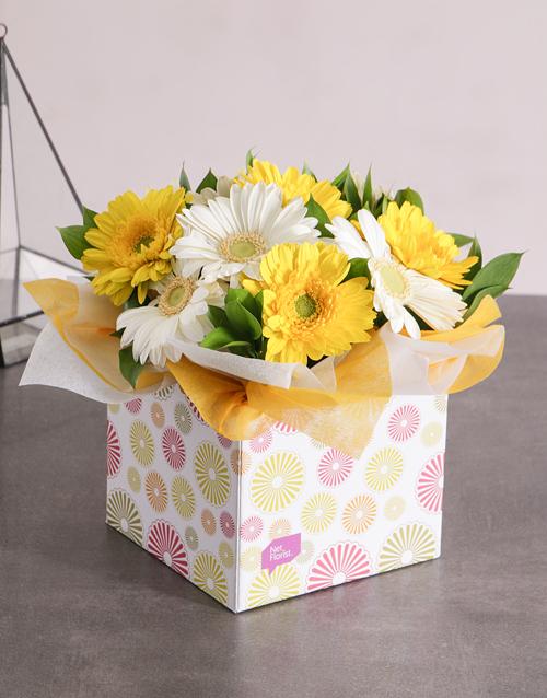 colour: Sunny Box of Gerbera Daisies!