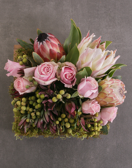anniversary: Mixed Proteas in Wooden Crate!
