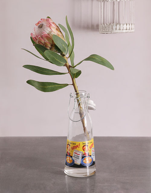 seasonal: Single Protea in Milk Bottle!