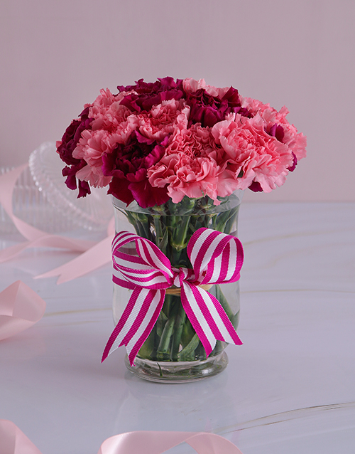 colour: Pink and Purple Carnations in a Vase!