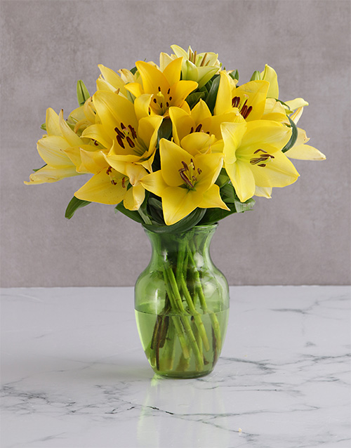 colour: Yellow Delight Lily Blossoms!