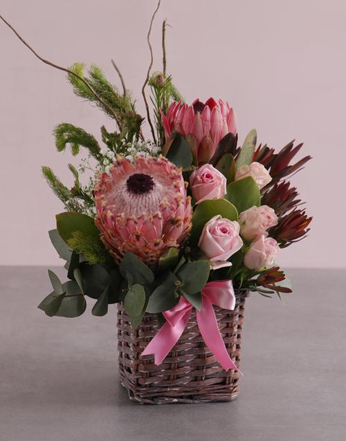 proteas: Pink Blooms Variety Basket!