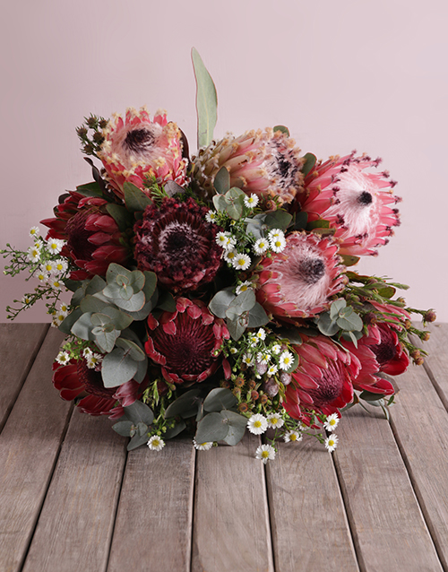 proteas: Pink Protea Floral Variety!