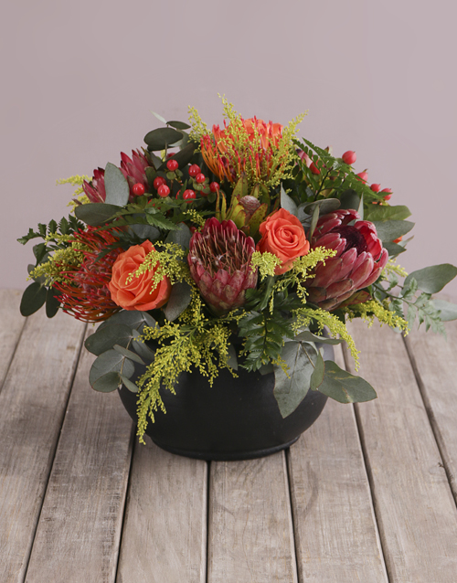 flowers: Elegant Colour Blooms!