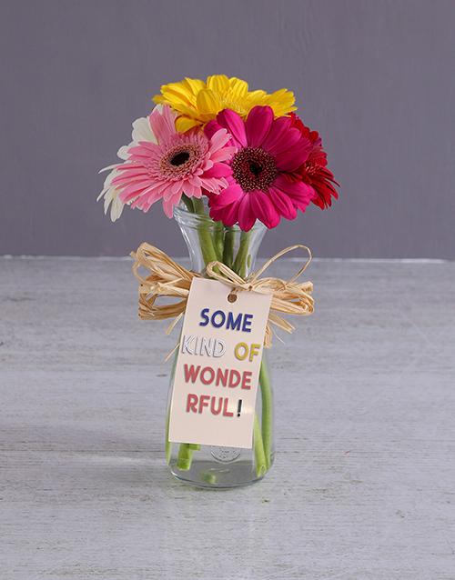 colour: Wonderful Gerbera Vase!