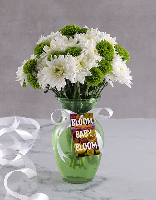 colour: Bloom Baby Sprays In Vase!