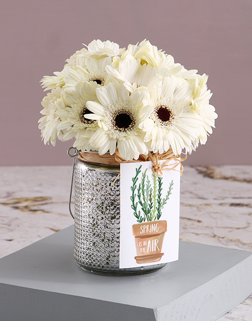 flowers: Gerbera Cloud With Silver Lining!