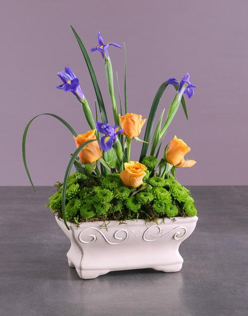 colour: Blooming Spring Garden!