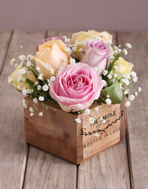 christmas: Mixed Roses Rooted In Love!