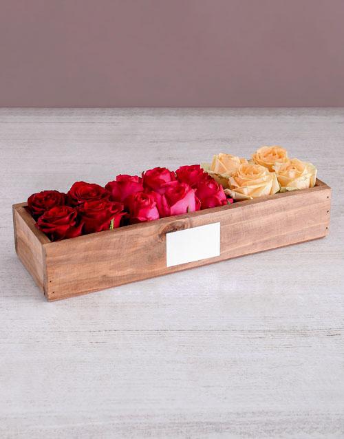 anniversary: Radiant Rose Sensation!