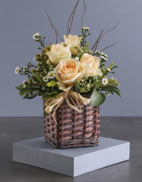 roses: Charming Cream Rose Blossoms!