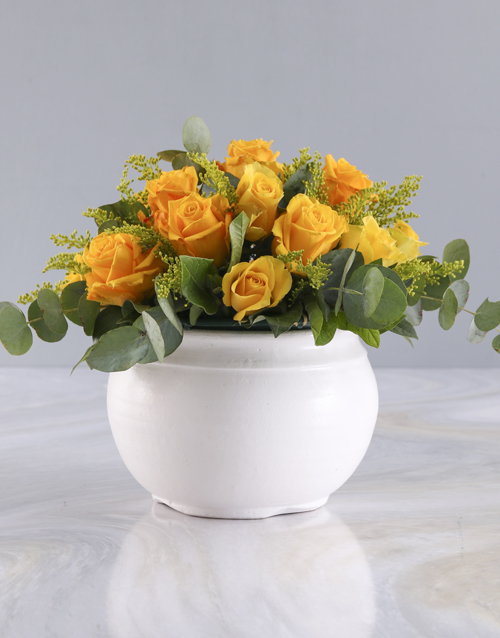 roses: Radiant Yellow Roses in White Pot!